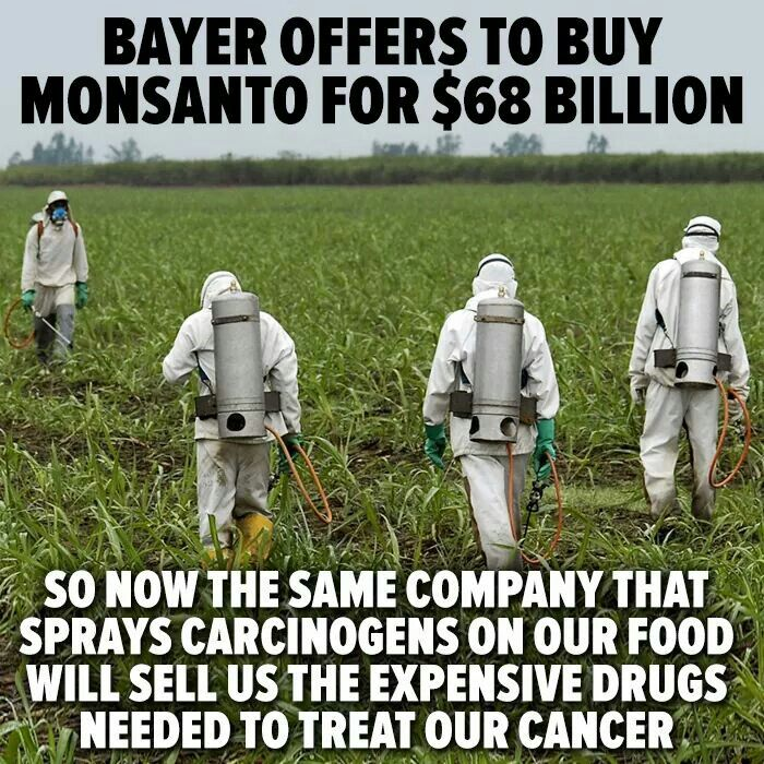 Monsanto Roundup Fight Erupts in Calif. Court – Judge calls out lawyers